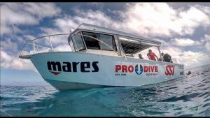 Great Barrier Reef Trip